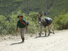 A man with his Donkey