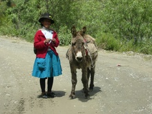 A Woman with her Donkey