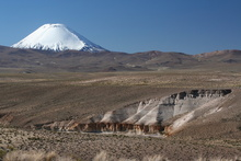 Volcano Parinacota (6.348 m) in the Background