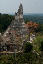 Temple I at Tikal